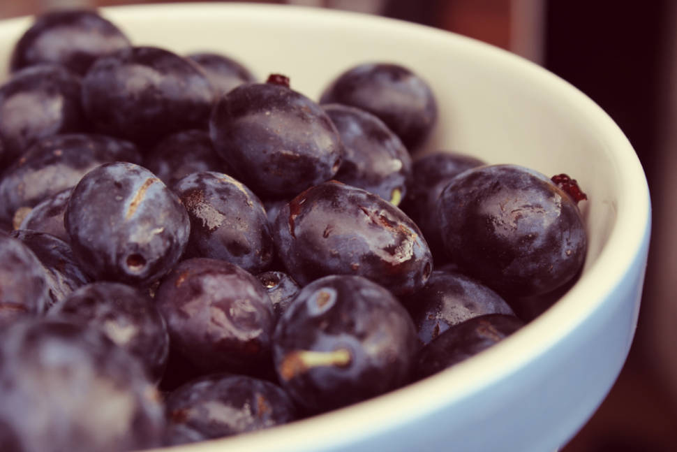 Damsons in Scotland - Best Time