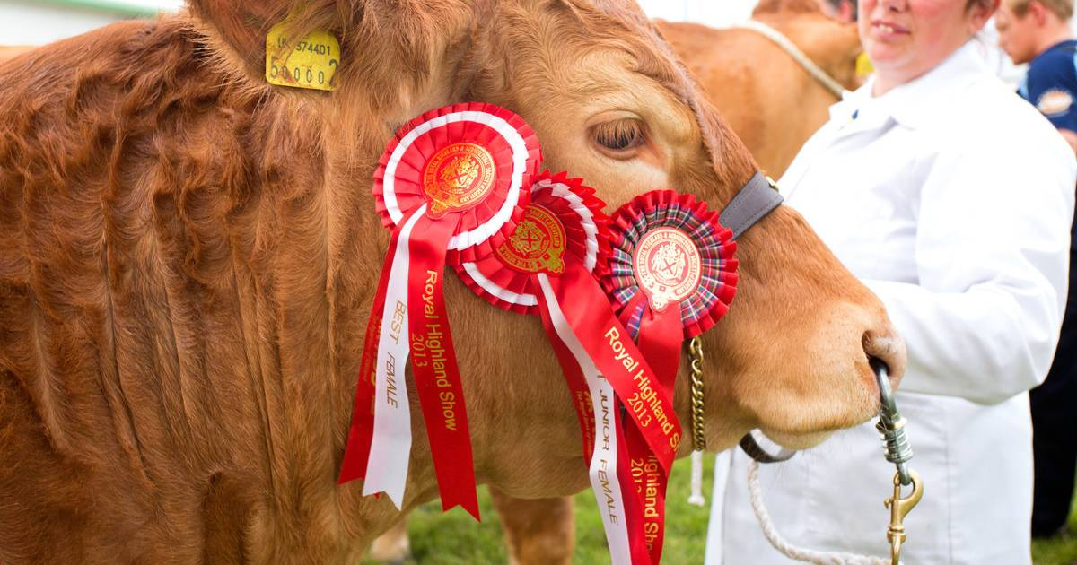Royal Highland Show in Scotland - Best Time