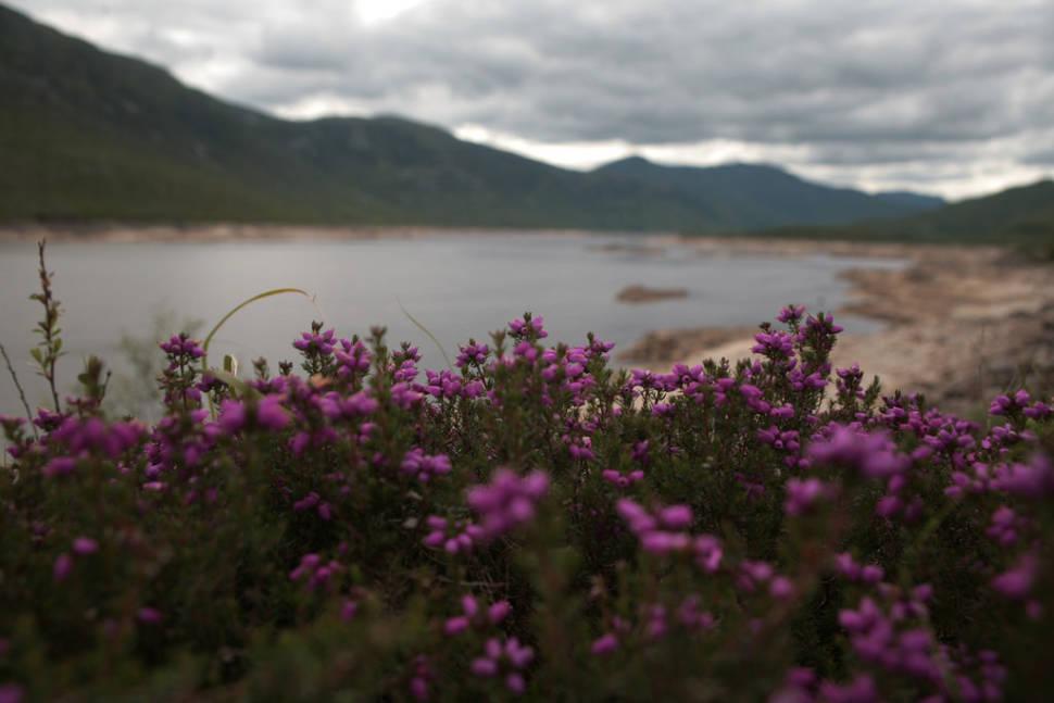 Summer in Scotland - Best Time