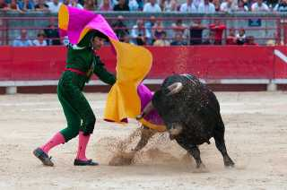 Bullfights at La Maestranza