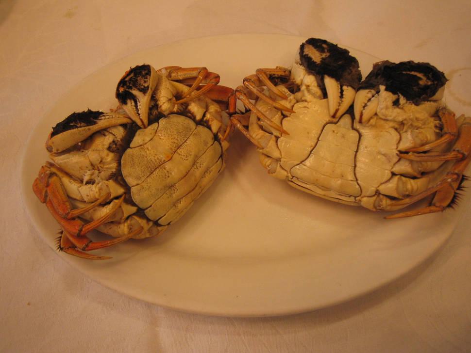 Hairy Crab Season in Shanghai - Best Season