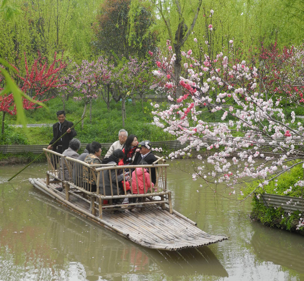 Floating at the Nanhui Peach Blossom Festival in Nanhui, China