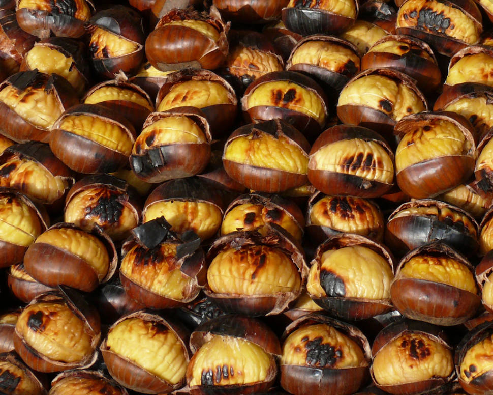 Sicilian Chestnuts in Sicily - Best Season