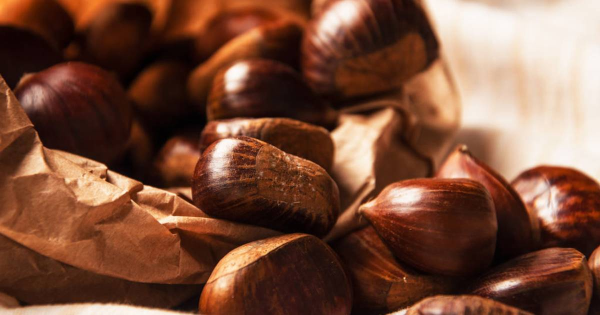 Sicilian Chestnuts in Sicily - Best Time