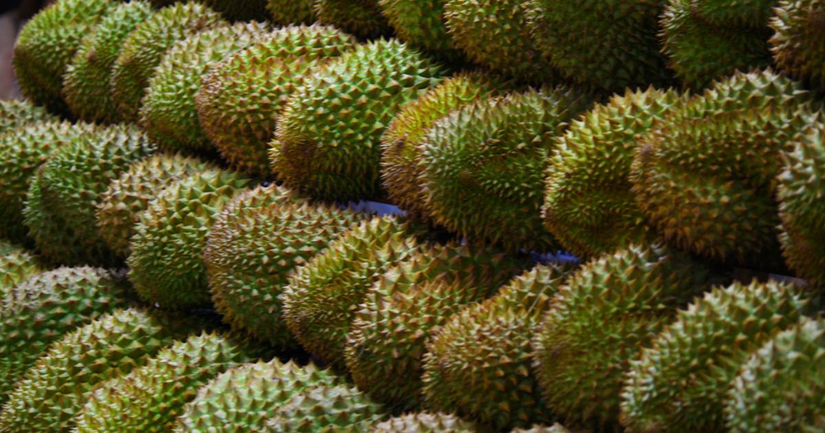 Durian in Singapore - Best Time