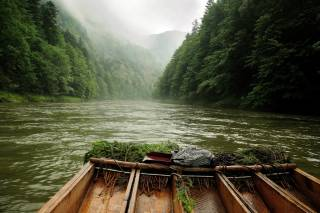 Wood Rafting on Dunajec River