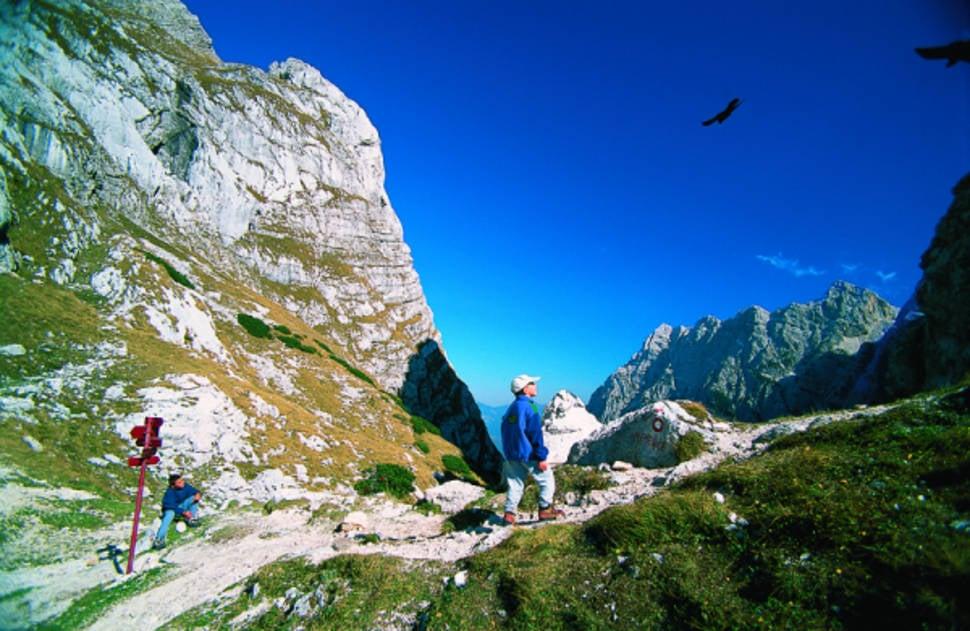 Eagles above the Luknja Pass near Triglav