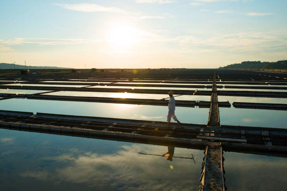Salt Harvest in Slovenia - Best Season