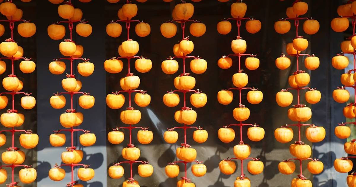 Persimmon Harvest and Gotgam Making in South Korea - Best Time