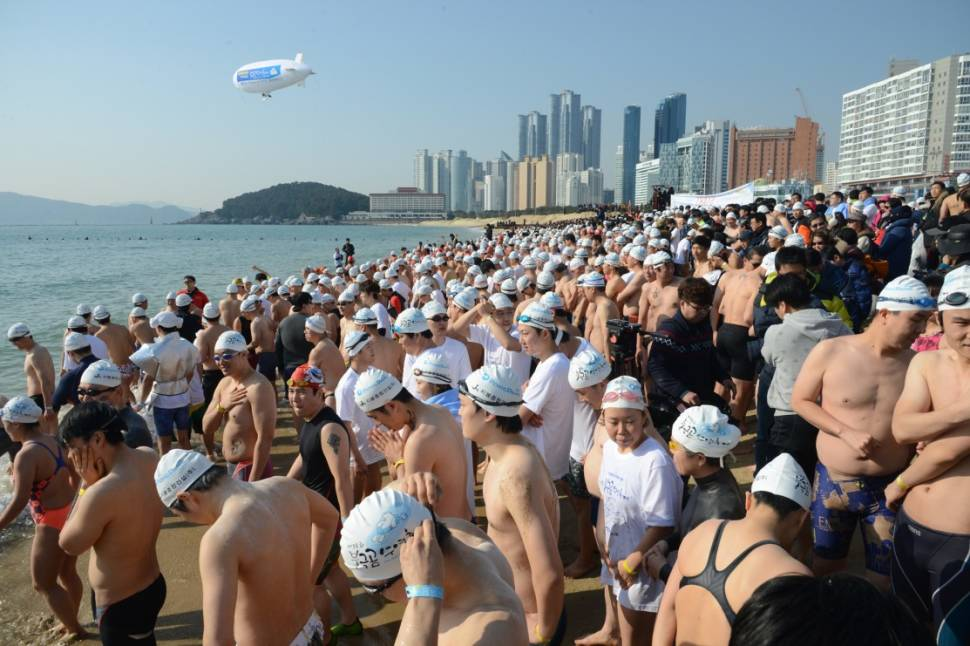Best time for Polar Bear Swim Festival in South Korea
