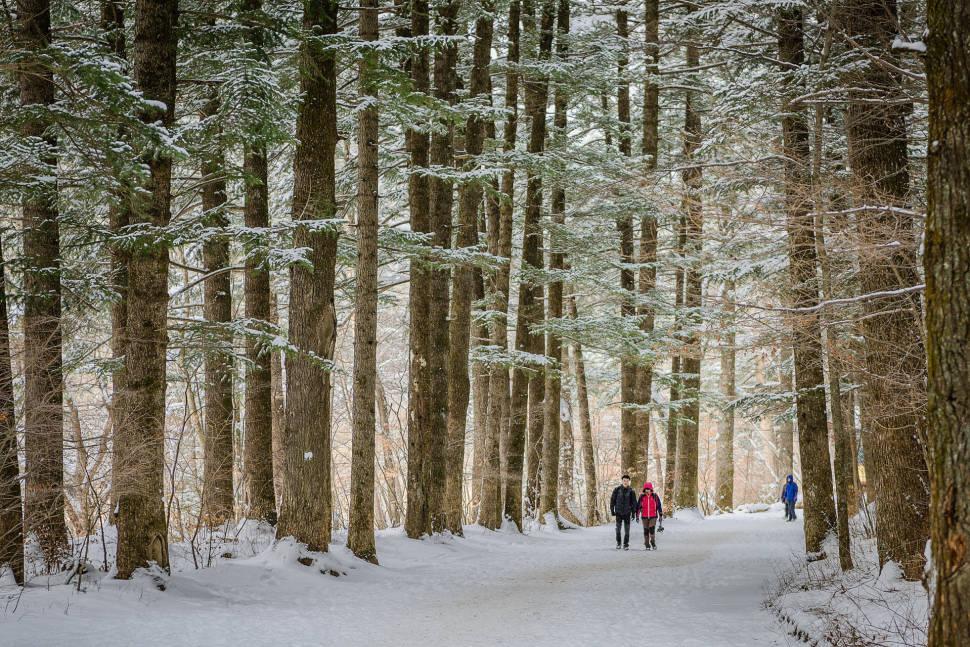 Winter in South Korea - Best Time