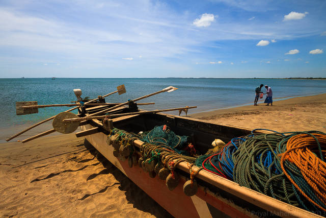 Deep Sea Fishing on theEast Coast in Sri Lanka - Best Season