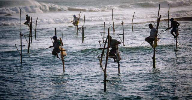 Stilt Fishing in Sri Lanka - Best Season