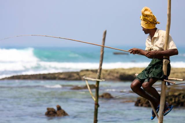 Stilt Fishing in Sri Lanka - Best Time