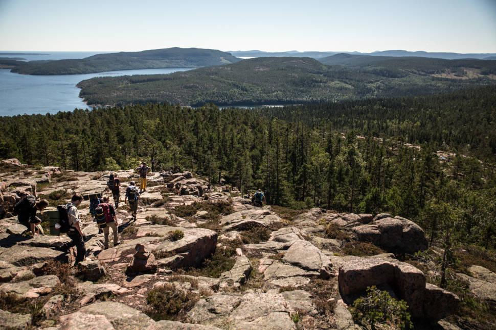 Hiking and Trekking in Sweden - Best Season