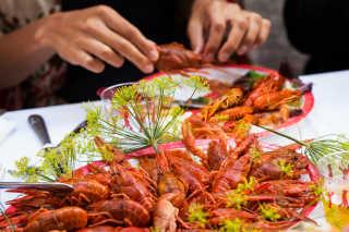 Kräftskiva: Crayfish Party