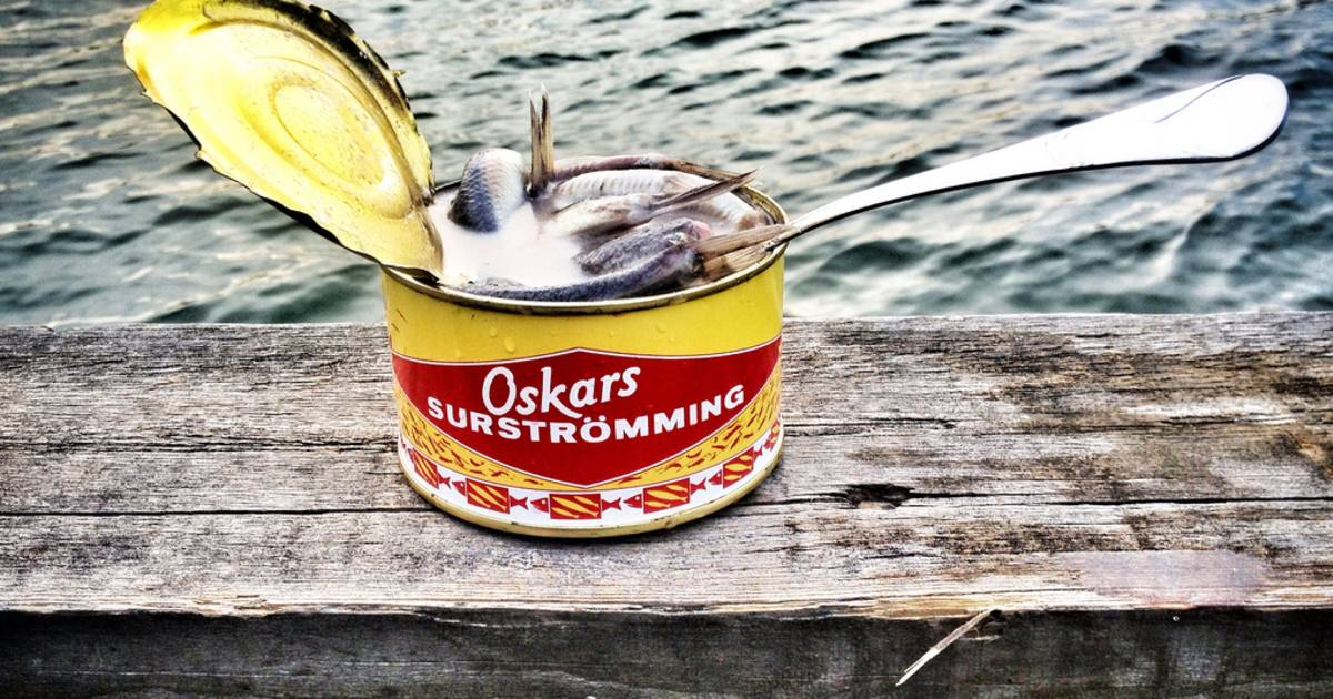 Surströmming or Sour Herring in Sweden - Best Time