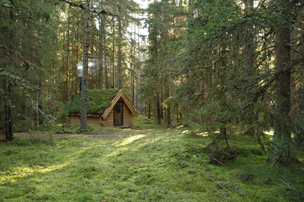 Best time for Tree House Hotel in Sweden