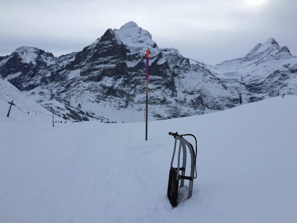 Faulhorn-Grindelwald Toboggan in Switzerland - Best Time