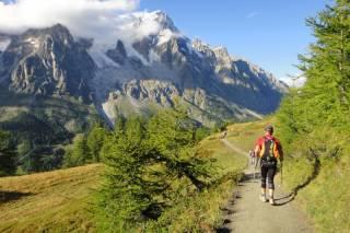 Ultra-Trail du Mont-Blanc (UTMB)