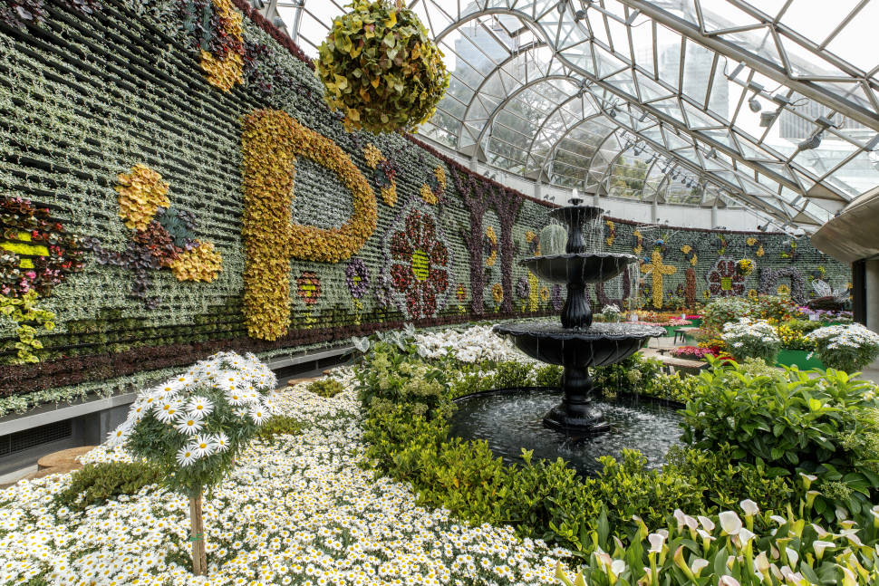 Pollination floral display at The Calyx