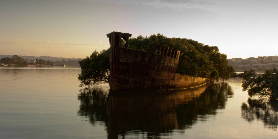 SS Ayrfield Shipwreck in Sydney - Best Time