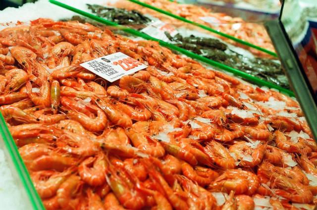 Sydney Fish Market in Sydney - Best Time