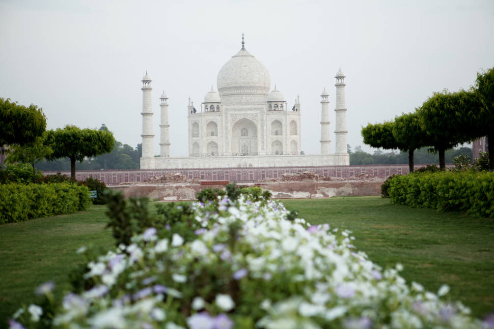 Gardens of Agra after the Monsoon in Taj Mahal and Agra  - Best Season