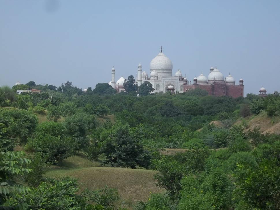 Taj Mahal from Nature Walk Trail