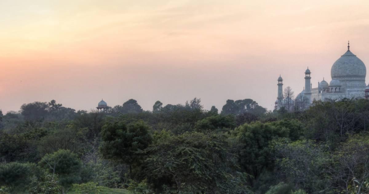 Taj Nature Walk Blooming in Taj Mahal and Agra  - Best Time