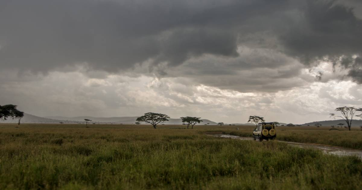 Long Rainy Season in Tanzania - Best Time