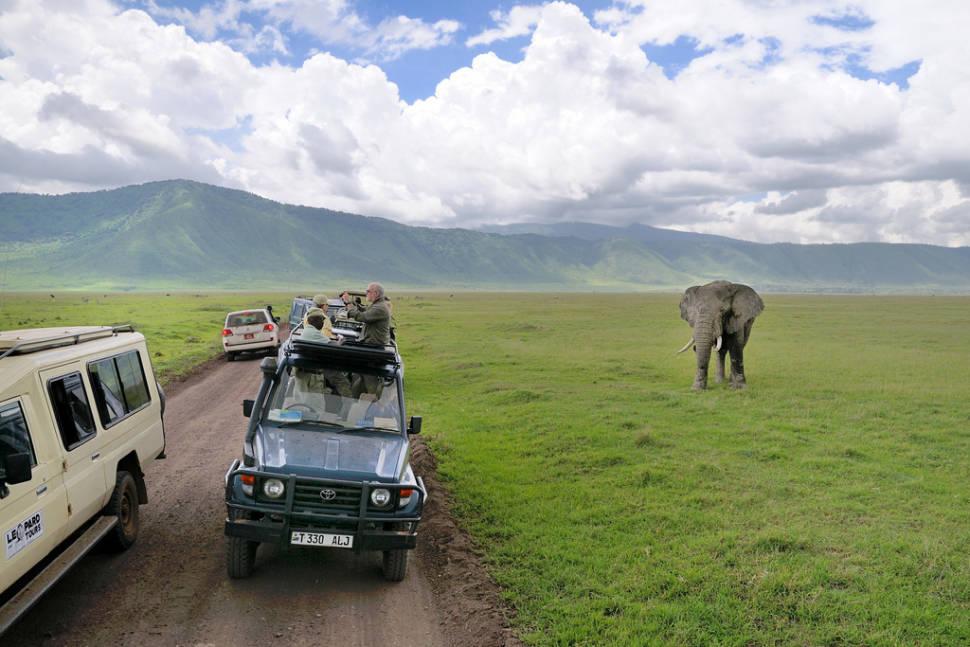 Shoulder Season in Tanzania - Best Time