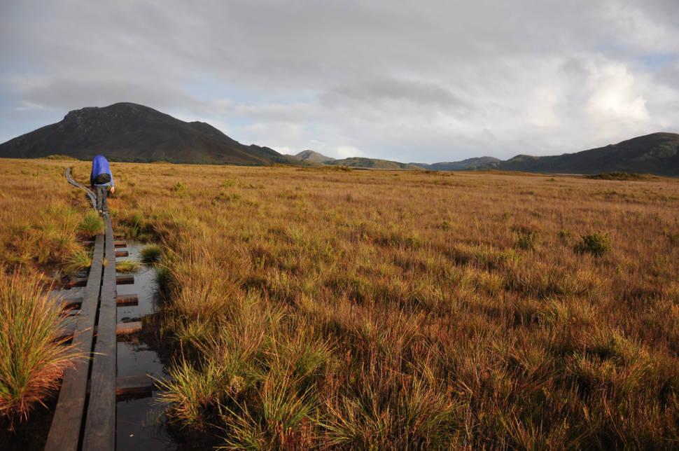 Bushwalking in Tasmania - Best Time