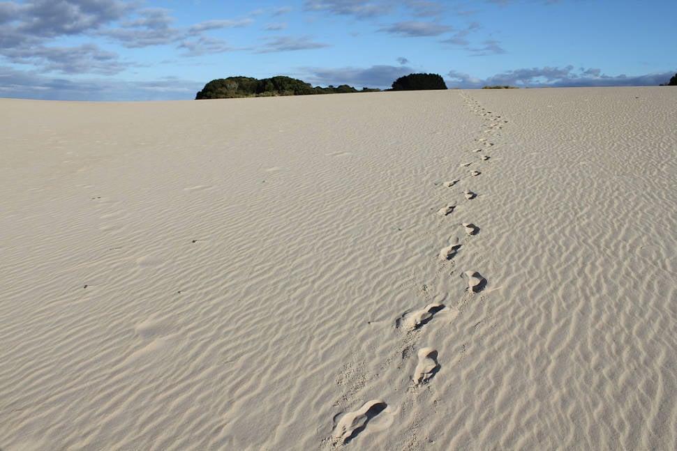 Sandboarding Season in Tasmania - Best Time