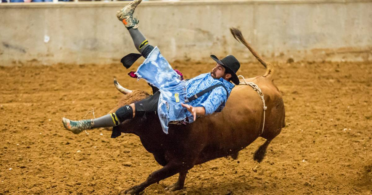 Rodeo in Texas - Best Time