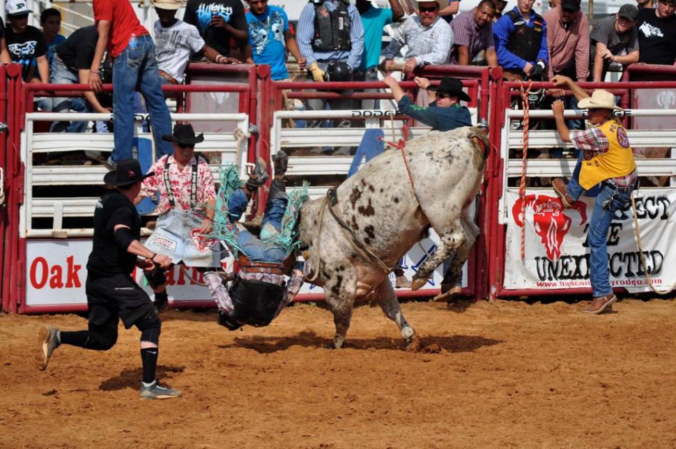 Rodeo in Texas - Best Season