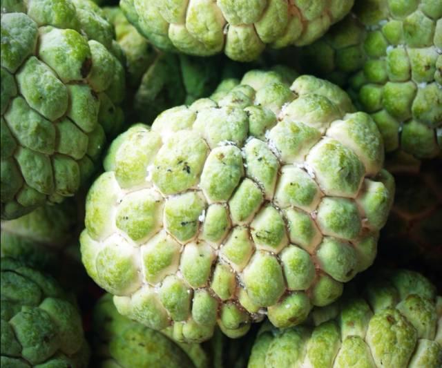Custard Apple Season in Thailand - Best Time