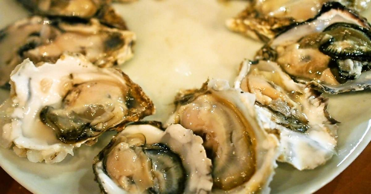 Oysters Harvest in Phuket in Thailand - Best Time