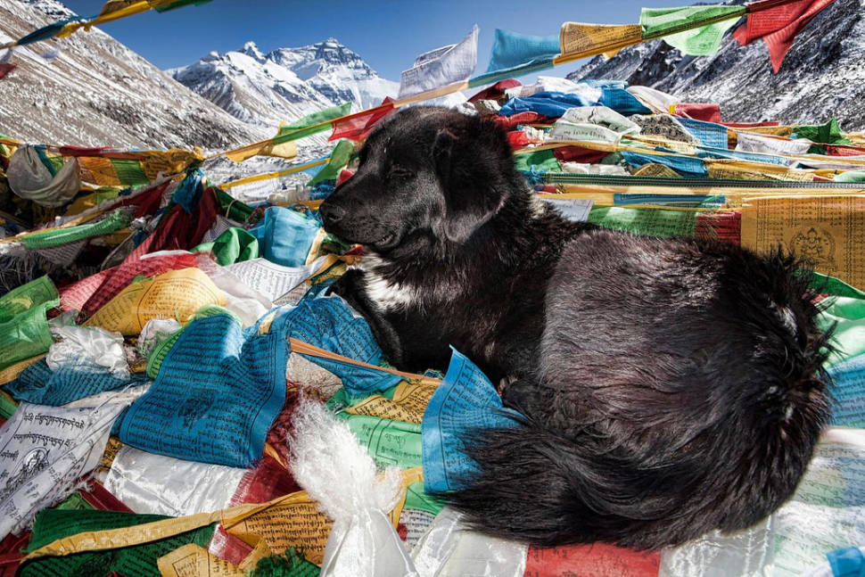 A quiet moment at North Everest Base Camp in Tibet
