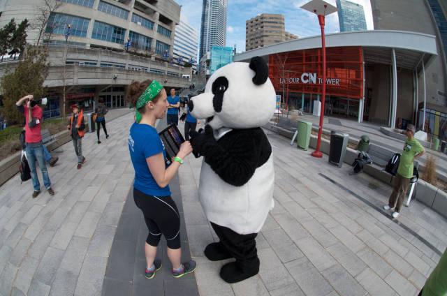 CN Tower Climb in Toronto - Best Season