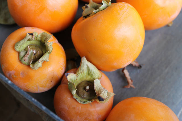 Persimmon Season in Turkey - Best Time