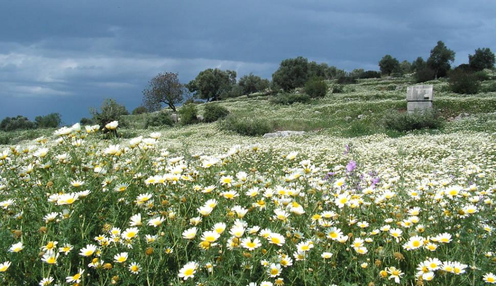 Patara, Kas District, Turkey