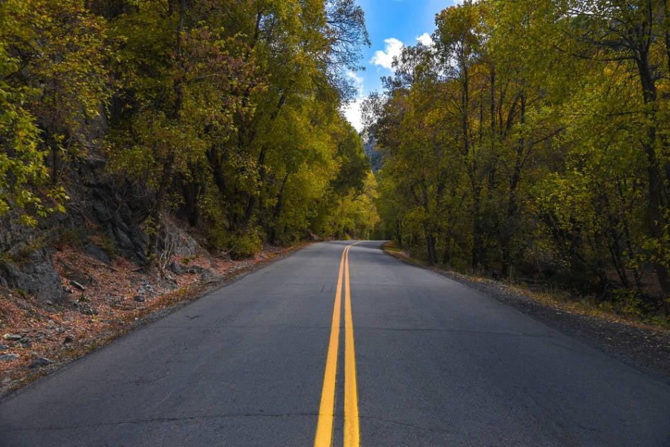 Alpine Loop Scenic Drive in Utah - Best Time