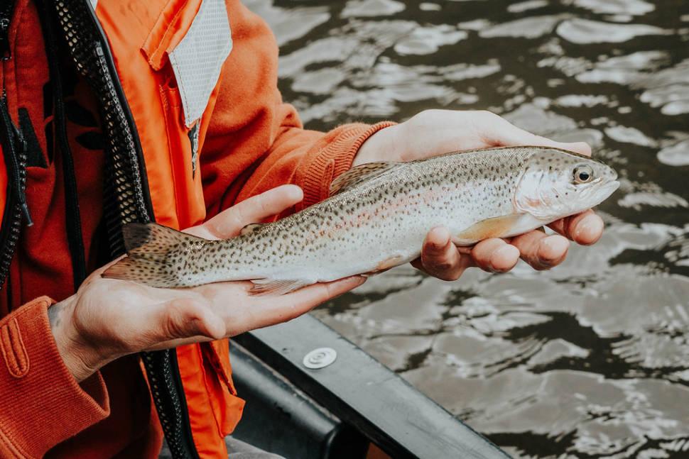 Fishing in Utah - Best Time