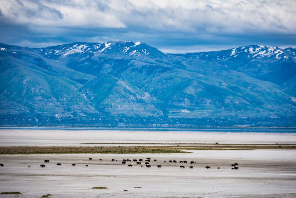 Best time for The Great Salt Lake in Utah