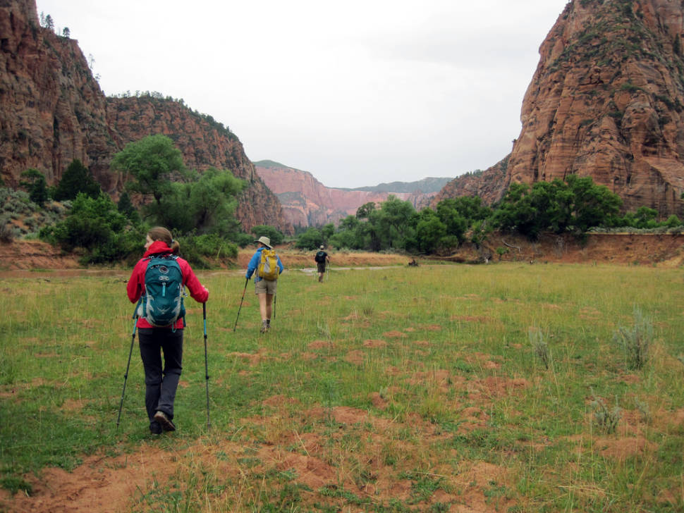 Best time to see Kolob Canyons Scenic Drive