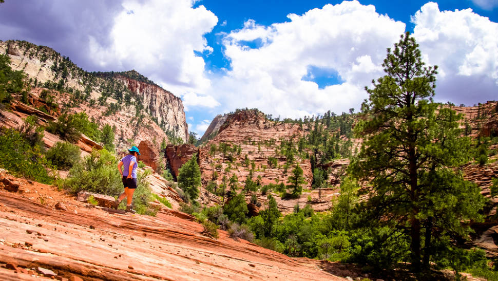 Best time for Zion National Park in Utah
