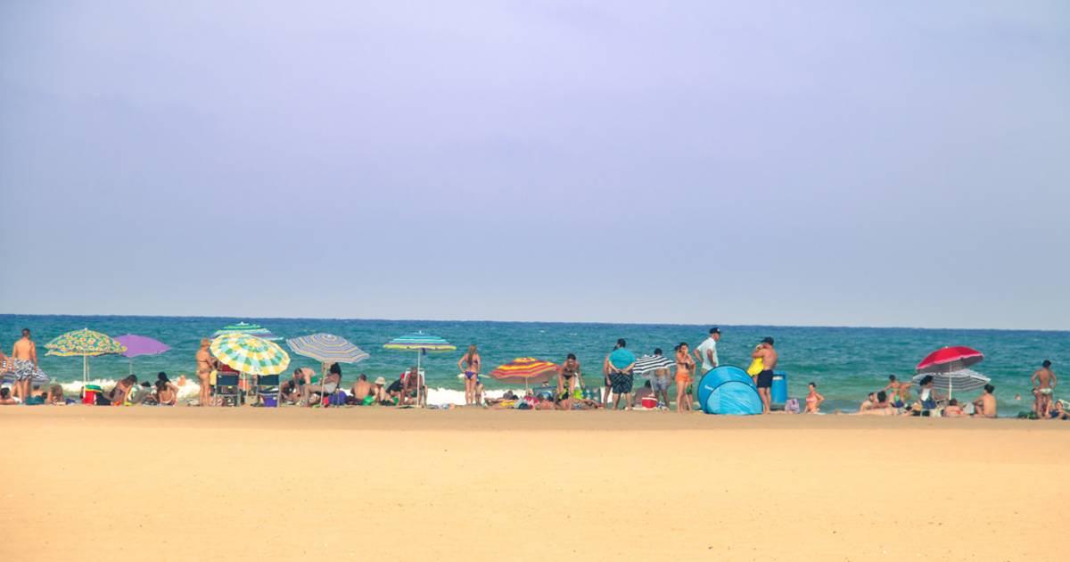 Swimming Season in Valencia - Best Time