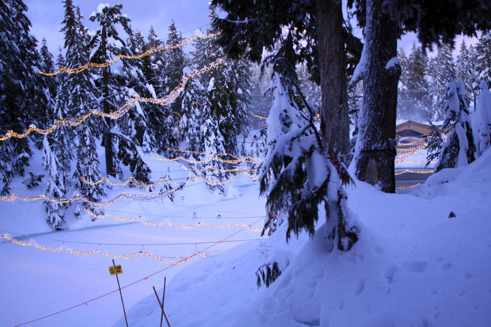 Best time for Grouse Mountain Light Walk in Vancouver