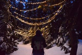 Grouse Mountain Light Walk
